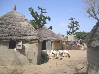 2010 Village en brousse